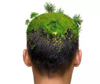 头顶植发哪家医院好 温州瑞丽诗做头顶加密多少钱