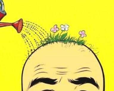 油性头发脱发怎么办 青岛洋美植发医院做头发种植价格