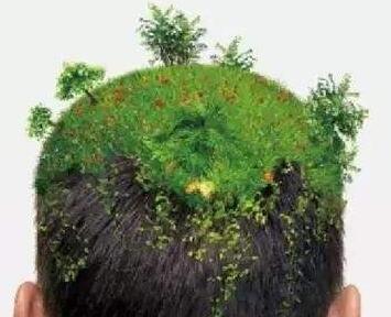 南宁植发价格表 南宁碧莲盛做头发种植需要多少钱