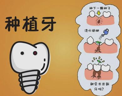 老人适合做种植牙吗 上海种植牙齿需要多少钱