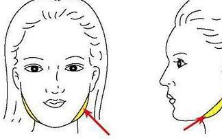 北京京韩和北京韩啸整形正规吗 面部吸脂对身体有影响吗
