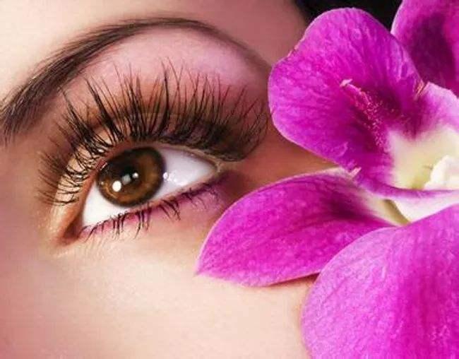 睫毛种植有何特点 贵阳雍禾种睫毛多少钱