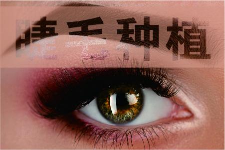 济南碧莲盛睫毛种植怎么样 活得漂亮是一种人生