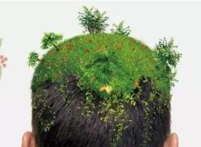 植发一般多少钱 北京军都医院种植头发效果自然成活率高